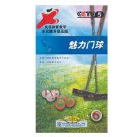 原装正版 CCTV 央视体育教学 魅力门球 (2DVD) 视频 光盘