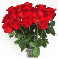 花语叶情红玫瑰生日鲜花香槟玫瑰花束全国鲜花速递同城配送北京武汉上海广东成都全国送花上门单支A级红玫瑰 粉玫瑰 香槟玫瑰