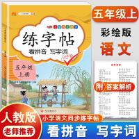 练字帖五年级上册 人教版小学生语文看拼音写词语字帖