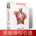 人体解剖图谱 Taschen授权引进 真人比例人体手绘手稿艺术画册 骨学关节学肌肉内脏外科胚胎医学 美学医学外科学艺术