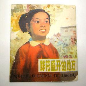 俞天白、王锦园写、汪铁画《鲜花盛开的地方》