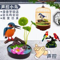 仿真声控小鸟电动感应会叫会动会说话宠物鸟笼儿童玩具