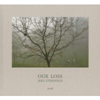 正版 Joel Sternfeld: Our Loss 乔・斯坦菲尔德 我们的损失 摄影集 英文原版