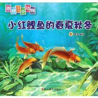 小红鲤的春夏秋冬(你好!小动物)