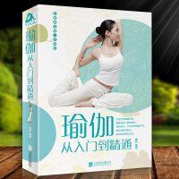 瑜伽从入门到精通减肥瑜伽大全 瑜伽书籍瘦身 初级入门瑜伽教程书 减肥塑身健身瑜伽练瑜伽的书 瑜伽书籍畅销书