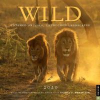 英文原版 托马斯・迈格森:自然生态摄影 2020年挂历 野生动物 Wild 2020 Wall Calendar 进口