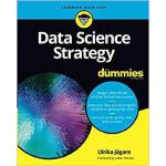 【预订】Data Science Strategy For Dummies 9781119566250