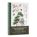不如去看一棵树:26棵平凡之树的非凡故事(德国亚马逊五星科普力作,讲述26棵常见之树背后的故事。探秘人与树的文化关联,见证大自然的演化奇迹)