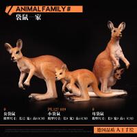 野生动物园袋鼠儿童实心仿真野生动物模型玩具套装