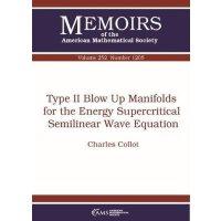【预订】Type II Blow Up Manifolds for the Energy Supercritical