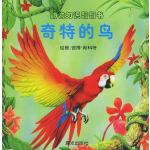 动物知识翻翻书:奇特的鸟(注音版)