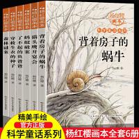 杨红樱画本系列全套6册背着房子的蜗牛森林谜案少儿科普图画书童话故事书绘本儿童6-9-12岁小学生课外书四五六年级儿童文