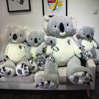 澳洲考拉公仔毛绒玩具少女大号玩偶娃娃懒人树袋熊可爱