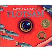 现货 海底的秘密 英文原版 FLOTSAM 流浪的照相机 精装 凯迪克金奖 儿童绘本 David Wiesner 大卫