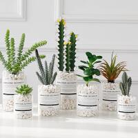 仙人掌盆栽家居绿植物假花摆件办公室房间ins装饰品