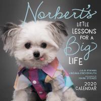 英文原版 治疗犬诺伯特的人生课2020年挂历 萌宠日历 新年礼物 Norbert's Little Lessons f