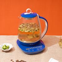 新飞养生壶家用玻璃养身多功能电煮茶器乐香甘茶 ・ XFYS-1801(产品型号:FTYS-001A)