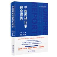 中国网络犯罪综合报告