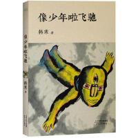 【正版二手书9成新左右】像少年啦飞驰(韩寒一路向前,属于少年的日子飞驰而过。 韩寒 天津人民出版社