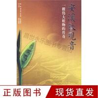 安溪铁观音:一棵伟大植物的传奇l