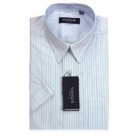 YOUNGOR雅戈尔衬衫男正品免烫男士短袖衬衫新款SNP13300-22