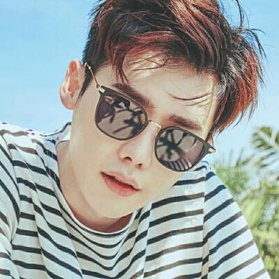 新款太阳镜男士墨镜明星款偏光镜复古长方形个性眼镜潮人