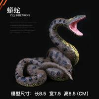 野生动物世界响尾蛇 蟒蛇 眼镜蛇儿童实心仿真动物园玩具模型