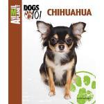 【预订】Chihuahua