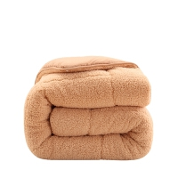 羊羔�q被子冬被加厚保暖宿舍冬季棉被�稳穗p人被芯春秋被褥 暖意�q�q-冬被