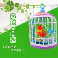 儿童玩具鸟笼带鸟声控感应小鸟会说话的鸟电动仿真小鸟会动会叫