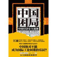 【二手书8成新】中国困局--中国经济安全透视 江涌 经济科学出版社
