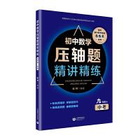 初中数学压轴题精讲精练(九年级+中考)(人教版)
