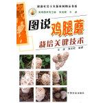 图说鸡腿蘑栽培关键技术(建设社会主义新农村图示书系)