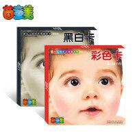 新生儿视觉发育激发卡(全2册)
