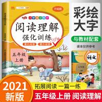 阅读理解五年级上册语文 人教版部编版五年级上语文课内外阅读理解强化训练