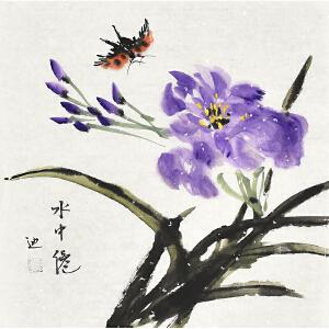 当代著名画家杨迪小品花鸟画gh03556