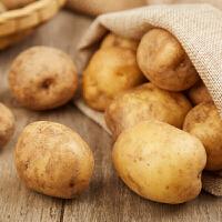 陕西特产新鲜土豆5kg 洋芋马铃薯蔬菜现挖