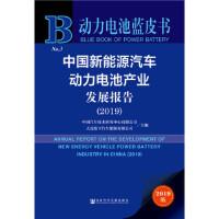 [正版二手9成新]动力电池蓝皮书:中国新能源汽车动力电池产业发展报告(2019),中国汽车技术研究中心 大连松下汽车能