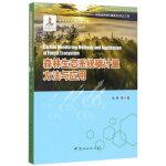 森林生态系统碳计量方法与应用/碳汇中国系列丛书