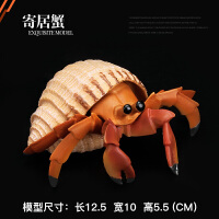 螃蟹 寄居蟹 仿真海洋海底生物玩具动物模型儿童男女孩生日礼物