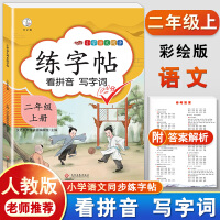 练字帖二年级上册 人教版小学生语文看拼音写词语字帖