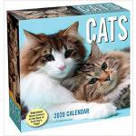 【预订】Cats 2020 Day-To-Day Calendar 9781449497705