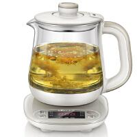 小熊(Bear)养生壶全自动加厚玻璃 电热烧水花茶壶煮茶器 YSH-A08U6