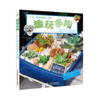 【二手书8成新】趣玩多肉 (韩) 元钟姬著 水利水电出版社