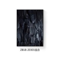 北欧装饰画客厅 黑白羽毛卧室画餐厅壁画 北欧风简约书房饭厅挂画 70*100 铝合金黑色(带有机玻璃) 单幅价格,