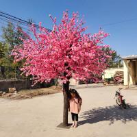 假桃树大型仿真桃花树假桃树仿真桃花树大型植物 仿真樱花树仿真梅花树许愿树桃花装饰