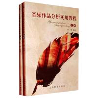 音乐作品分析实用教程 张�Z 多芬柴科夫斯基钢琴奏鸣曲曲目分析 肖邦钢琴奏鸣曲音乐作品分析教材教程书籍