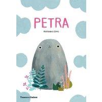 英文原版 石头佩特拉 Marianna Coppo插画绘本 Petra