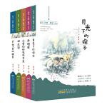 薛涛大地星空系列(套装共5册)