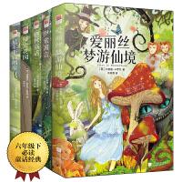 童话故事:尼尔斯骑鹅旅行记+爱丽丝梦游仙境+格林童话+秘密花园+伊索寓言(全五册)